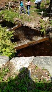 Fishway2