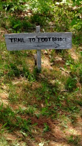 trail to foot bridge